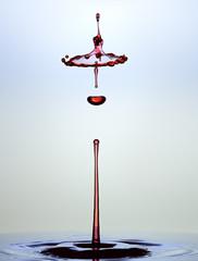 Water drop close up. Liquid sculpture.