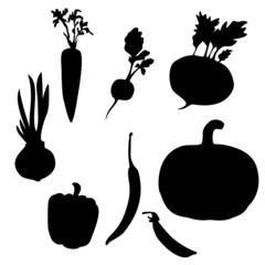 vegetable shape. vector illustration