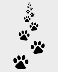 Black trail forward of dog, vector illustration