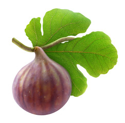Fresh fig isolated on white