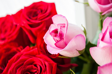 Beautiful bouquet of pink and red roses