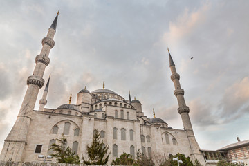 Blue mosque, rear view, Istanbul, Turkey