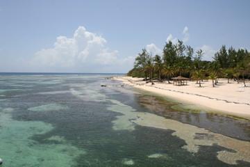 Tropical Island Beach Cayman Island Brac