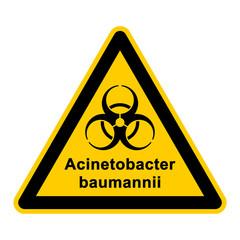 wso105 WarnSchildOrange - acinetobacter baumannii - g3030