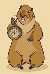 Funny cartoon groundhog. Vector illustration