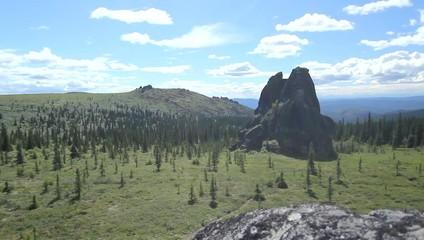Alaska Cliff Pine Tree Sun