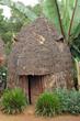 Leinwanddruck Bild - House of Dorze people, Ethiopia, Africa