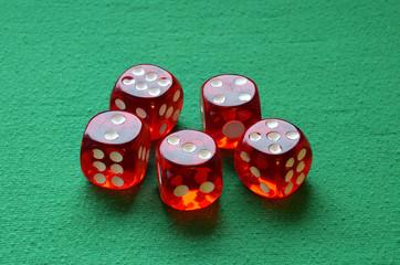 Gamble dices