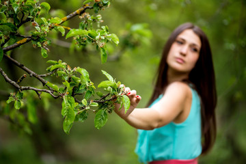 Woman hand holding a tree branch