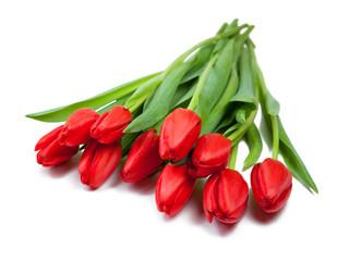 rote Tulpen zum Valentinstag