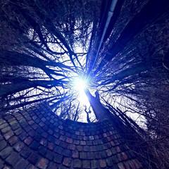 Lichtblick zum Himmel