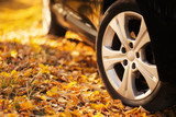Fototapety The car on the nature. Wheels and tyres closeup near autumn park