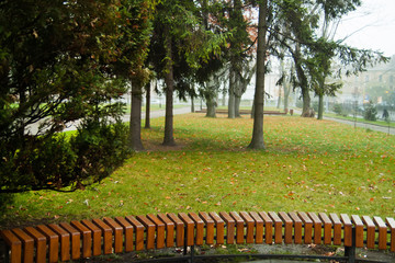 park with long bench early morning in fog and rainy cold weather