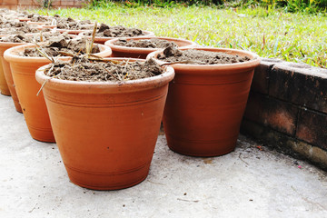 pottery for planting