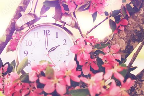 Springtime Daylight Savings Time - 76688758