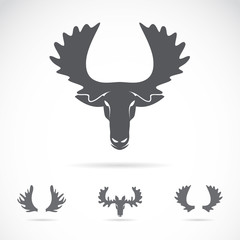 Vector image of an moose head on a white background