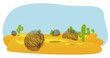 cactus and tumbleweed desert - 76690556
