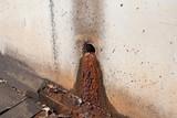 Rusty sludge from the drainpipe poster
