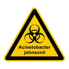 wso119 WarnSchildOrange - acinetobacter johnsonii - g3044