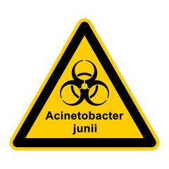 wso120 WarnSchildOrange - acinetobacter junii - g3045
