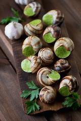 Escargots de Bourgogne, close-up, studio shot