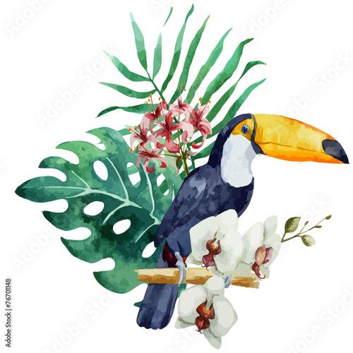 pattern toucan parrot tropical jungle nature background - 76701148
