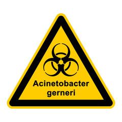 wso124 WarnSchildOrange - acinetobacter gerneri - g3049