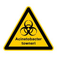 wso125 WarnSchildOrange - acinetobacter towneri - g3050