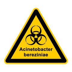 wso135 WarnSchildOrange - acinetobacter bereziniae - g3060