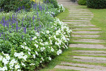landscape of floral gardening with pathway in garden