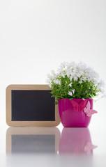 Leere Tafel, Schmetterlinge und Blumen - Hochformat
