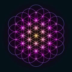 Glowing Ornament Flower of Life - Geometrical Pattern