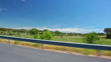View from the car to the Spanish summer plains