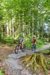 Bike-Tour im Wald