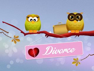 owls divorced