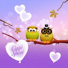 Wedding of owls