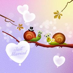 Wedding of snails