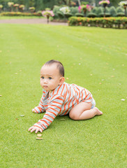 baby crawling on the grass field garden