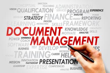 Document Management word cloud, business concept