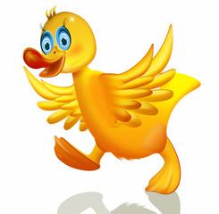 Duck die Ente, freigestellt