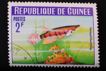 Guinea 1964 Postage stamp aquarian Senegal fish