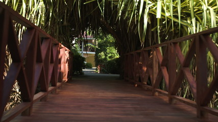 Crossing small wooden bridge among the palm branches
