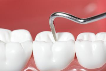 White teeth.