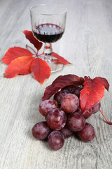 Wine composition: bunch of red grapes, wineglass and autumn leav