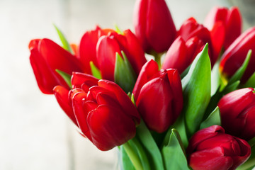 Valentine's day concept:  bunch of red tulips
