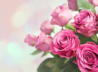 Bouquet of beautiful pink roses with bokeh background.