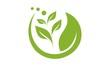 Leaf Logo 4 - 76741791