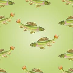 Seamless texture salmon grayling vector