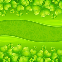 Clover leaf background in green