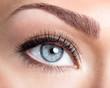 Leinwanddruck Bild - Beauty female eye with curl long false eyelashes